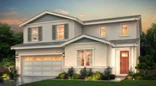 Lily - Cielo at Sand Creek | Horizon Collection: Antioch, California - Century Communities