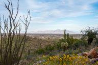 North Copper Canyon - The Villas Collection por Century Communities en Phoenix-Mesa Arizona