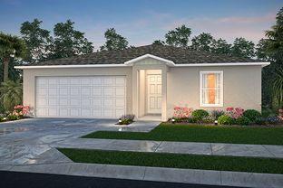 1650 Block - Lehigh Acres Classic: Lehigh Acres, Florida - Century Complete