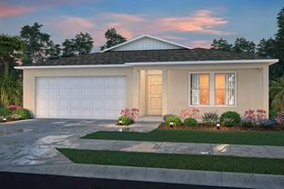 1650 Block - Spring Hill Classic: Brooksville, Florida - Century Complete