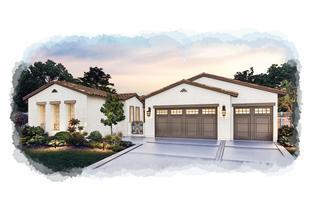 Plan 5y - Fountaingrove: Santa Rosa, California - Christopherson Builders