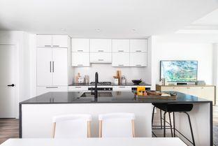 Floor Plan A1 - City Homes: Washington, District Of Columbia - Grosvenor Americas