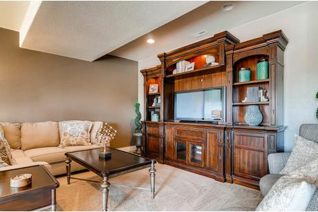 Study-in-Avondale-at-Sanctuary Pointe - Paired Patio Homes-in-Monument