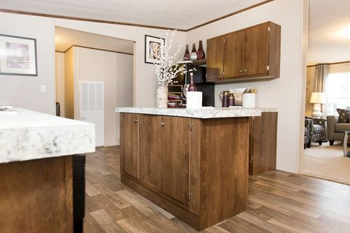 Kitchen-in-SATISFACTION-at-Clayton Homes-Springfield-in-Springfield