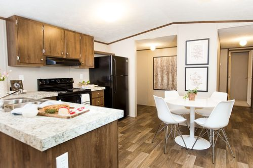 Kitchen-in-BLISS-at-Freedom Homes-Sherman-in-Sherman