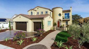 Windsor - The Groves: Santa Maria, California - Coastal Community Builders