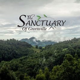 The Sanctuary of Greenville by COBBLESTONE HOMES in Greenville-Spartanburg South Carolina