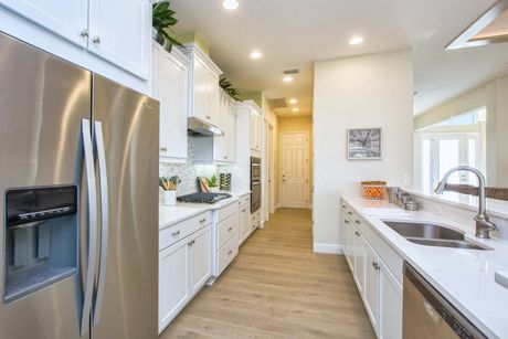 Kitchen-in-Palm Island-at-Lakes of Mount Dora-in-Mount Dora