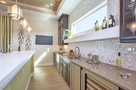 Wet-Bar-in-Palm Island-at-Lakes of Mount Dora-in-Mount Dora