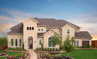 Towne Lake 80' by Coventry Homes in Houston Texas