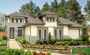 Grand Central Park 40' by Coventry Homes in Houston Texas