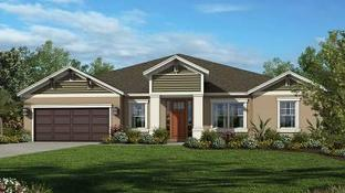 Abaco by Taylor Morrison - WaterGrass: Wesley Chapel, Florida - Crown Community Development