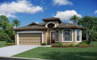 Salerno - Vitale Homes - WaterGrass: Wesley Chapel, Florida - Crown Community Development