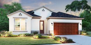 Carmel - Inland Homes - WaterGrass: Wesley Chapel, Florida - Crown Community Development