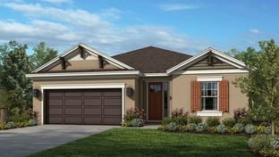 Aruba - Taylor Morrison - WaterGrass: Wesley Chapel, Florida - Crown Community Development