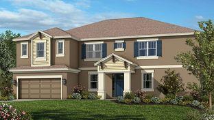 Tradewinds - Taylor Morrison - WaterGrass: Wesley Chapel, Florida - Crown Community Development