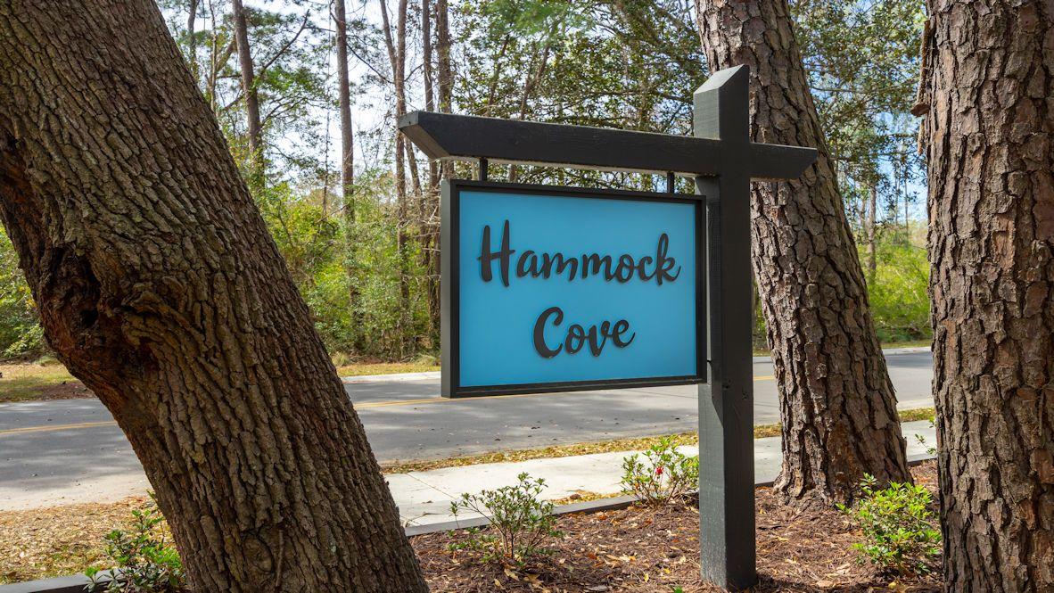 'Hammock Cove' by D.R. Horton - Myrtle Beach in Myrtle Beach
