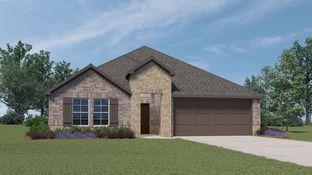 H40Z Zamboni - Bluewood: Celina, Texas - D.R. Horton