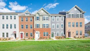 COLUMBUS - Westview South Townhomes: Frederick, Maryland - D.R. Horton