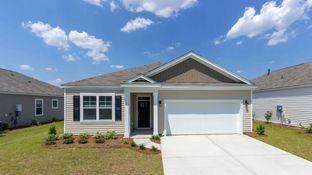 ARIA - Cane Ridge: Summerville, South Carolina - D.R. Horton