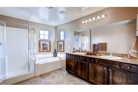 Bathroom-in-2988 Plan-at-Expressions-in-North Las Vegas