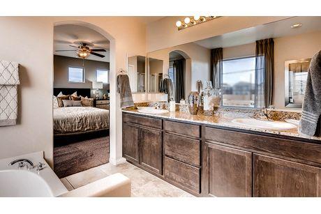 Bathroom-in-1735 Plan-at-Blue Nile Trails-in-Las Vegas