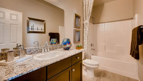 Bathroom-in-2631 Plan-at-Valley Heights-in-Logandale
