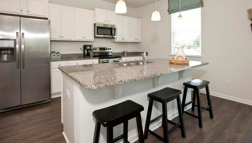 Kitchen-in-Arden-at-The Preserve at Morris Landing-in-Holly Ridge