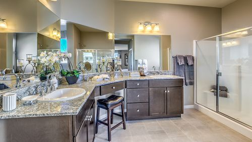Bathroom-in-2531 Plan-at-Valley Heights-in-Logandale