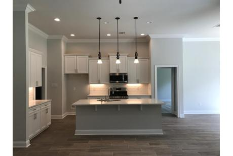 Kitchen-in-263 SAW GRASS LP.-at-Spring Lakes-in-Covington