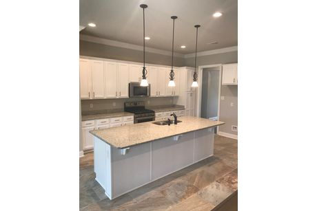 Kitchen-in-Johnson III A-at-Sawyers Ridge-in-Cantonment