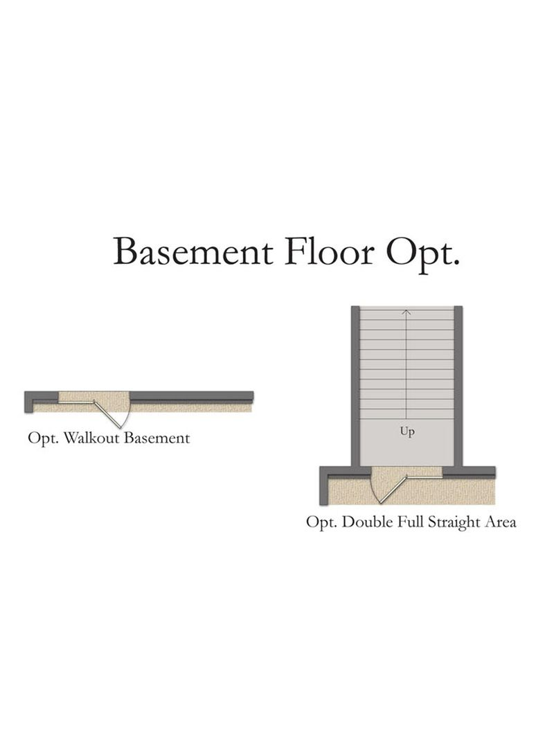 Basement Floor OPT