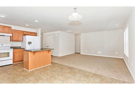 Empty-in-Wyatt II-at-Eastview Manor-in-Fairmont