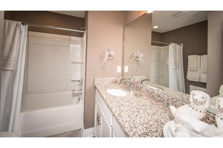 Bathroom-in-York II Garage-at-Canterbury Woods - Townhomes-in-Fairmont