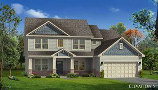 Marion - Vineyards: Charlotte, North Carolina - Dan Ryan Builders