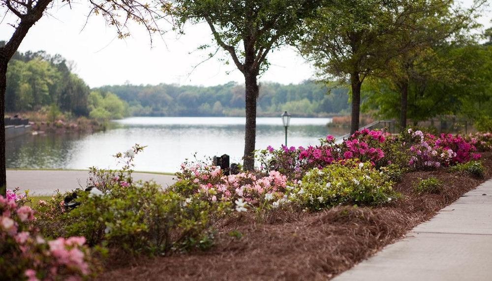 The Ponds In Summerville Sc By Dan Ryan Builders