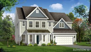 Stonehaven - South Pointe Estates: Summerville, South Carolina - Dan Ryan Builders