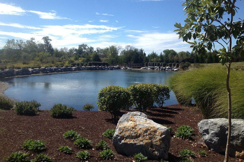 Cedar Meadows In White Post Va By Dan Ryan Builders