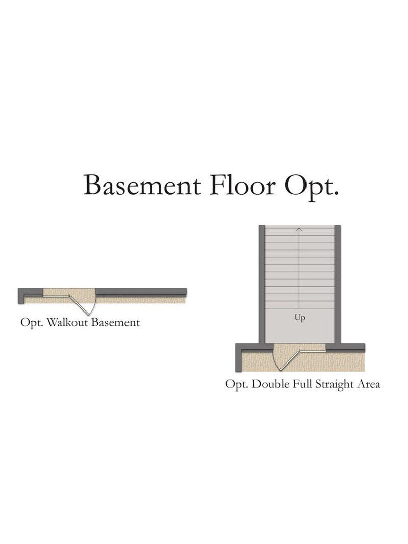 Basement Floor Opt