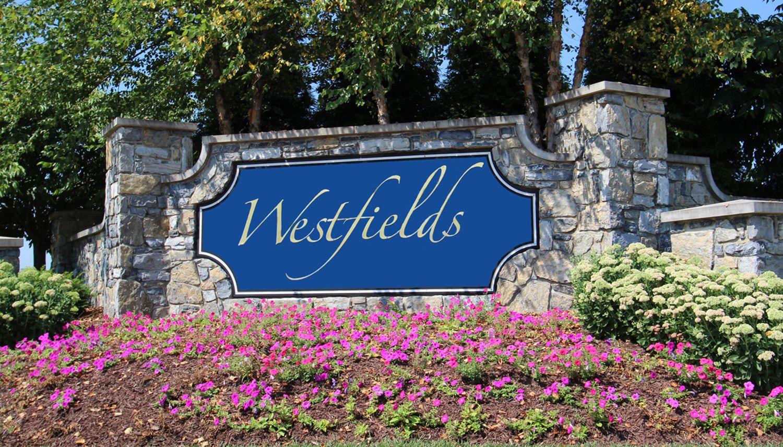'Westfields' by Dan Ryan - Washington Region in Hagerstown
