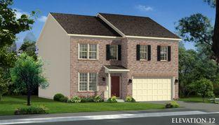 Cumberland II - Springdale Farm Single Family Homes: Gerrardstown, District Of Columbia - Dan Ryan Builders
