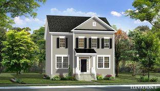 Clemson II - Brunswick Crossing Single Family Homes: Brunswick, District Of Columbia - Dan Ryan Builders