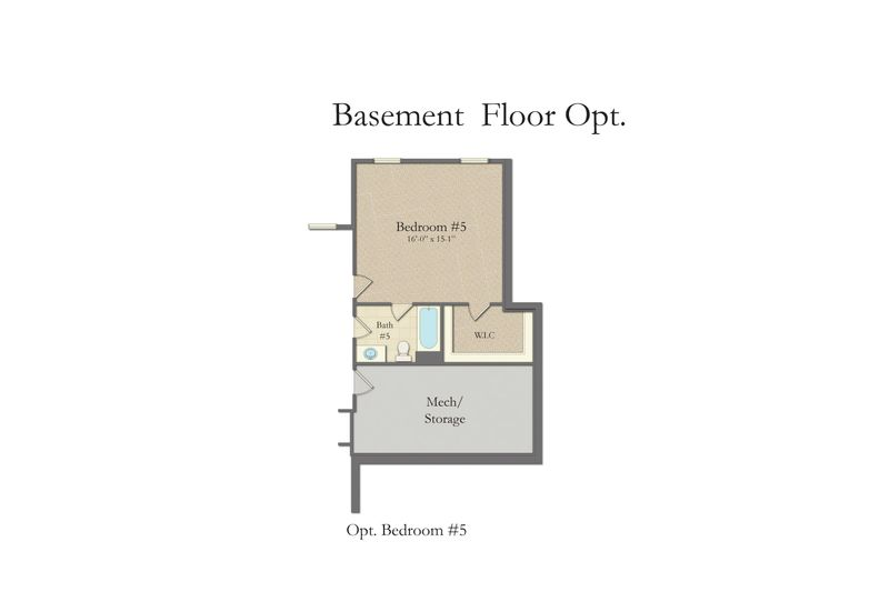 Basement Options