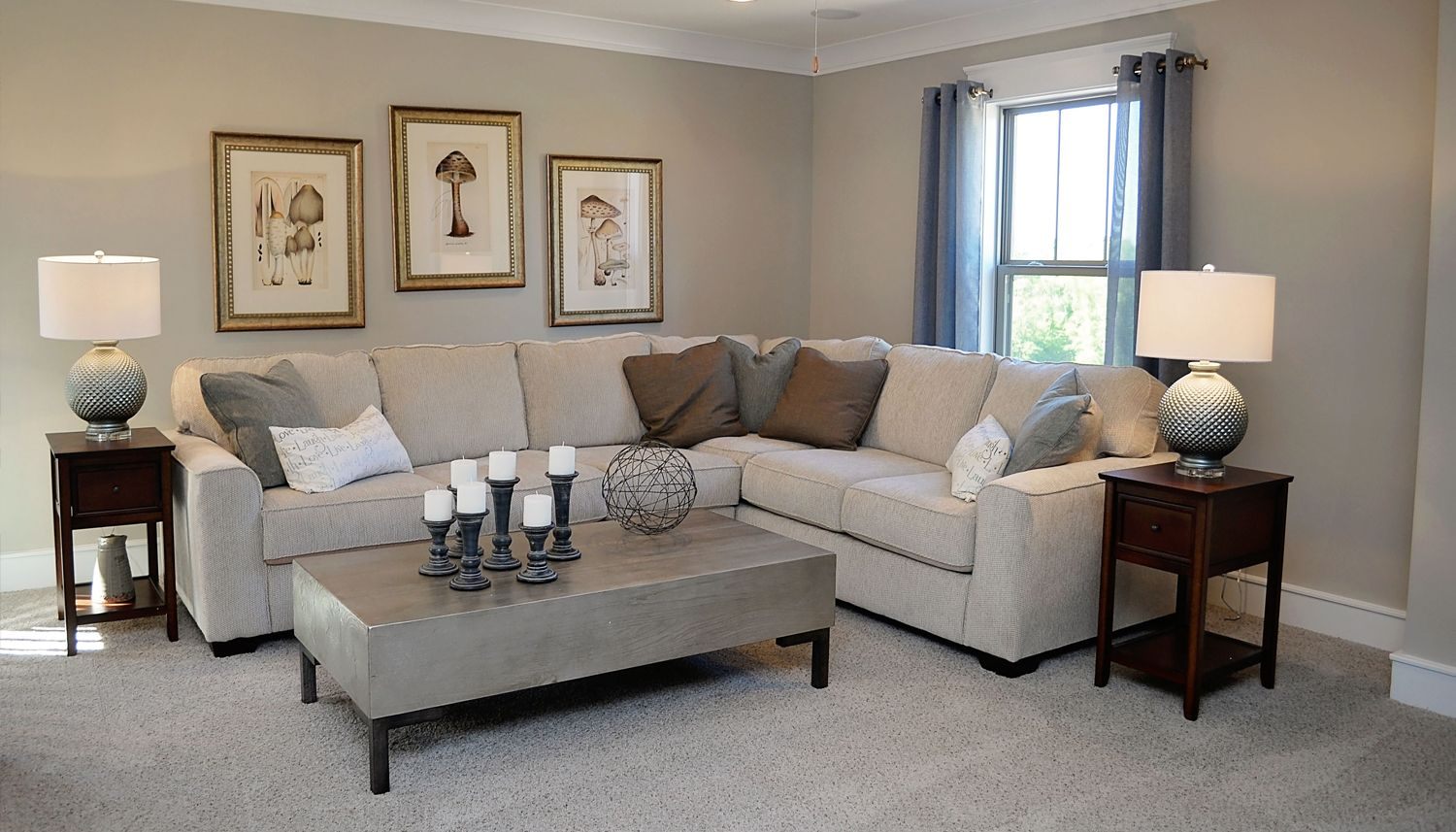 Living Area featured in the Stonefield By Dan Ryan Builders in Greenville-Spartanburg, SC