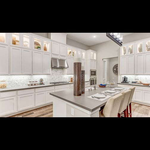 The Woodlands Creekside 55s Cassena Grove By Darling Homes 77375