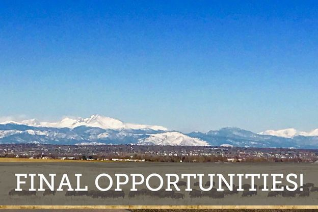 Stapleton - Final Opportunities