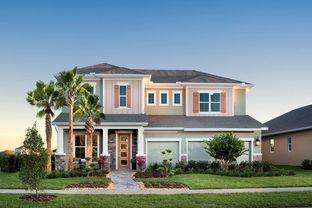 Norchester - Bexley - Village Series: Land O' Lakes, Florida - David Weekley Homes