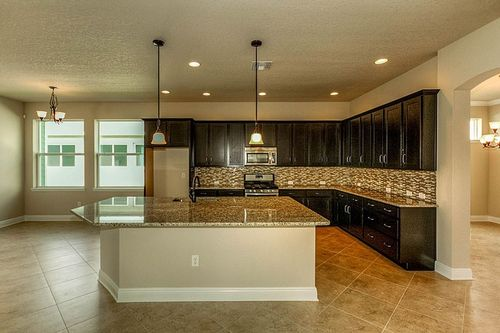 Kitchen-in-Rosewind            2 Story-at-Bexley - Cottage Series-in-Land O' Lakes