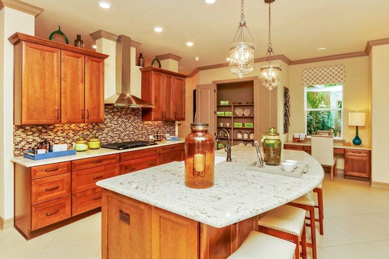 Kitchen-in-Frasier-at-Encore at FishHawk Ranch Tradition Series-in-Lithia