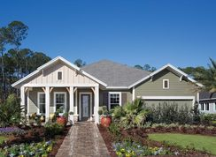 Lions - Falls at Shearwater - 60': Saint Augustine, Florida - David Weekley Homes